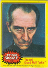 149  The Evil Grand Moff Tarkin.jpg (48188 bytes)