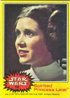 152  Spirited Princess Leia.jpg (48570 bytes)