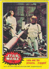 170  Luke and the princess trapped.jpg (56519 bytes)