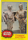187 Threepio and friend.jpg (58274 bytes)