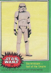 246-Stormtrooper - tool of the Empire.jpg (59848 bytes)