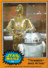 302-Threepio and Artoo.jpg (101409 bytes)